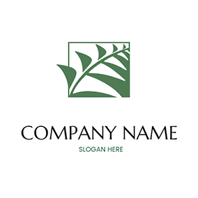 Abstract Square Palm Fern logo design