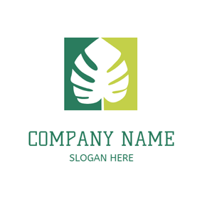 Green Background and White Palm Leaf logo design