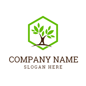 Green Hexagon and Thriving Tree logo design