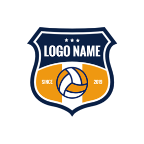 Retro Badge and Volleyball logo design