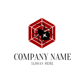 Spider Web and Spider logo design