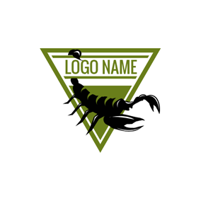 Triangle and Scorpion Icon logo design