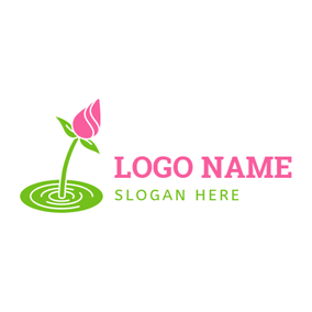 Golden Cover And Rose Water Pink Lotus Bud Logo Design